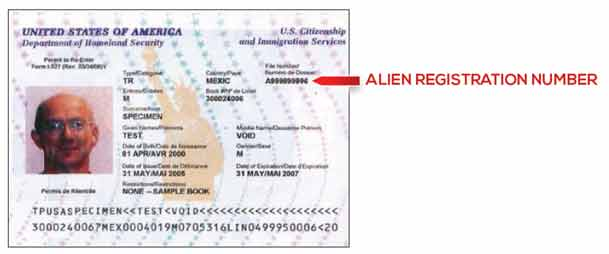 Immigration Document Types Massachusetts Health Connector