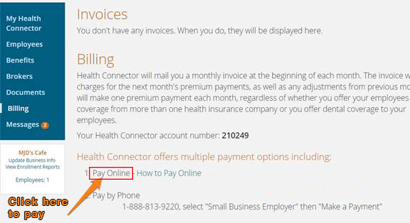 Screenshot of the pay online screen when an employer is logged into their account.